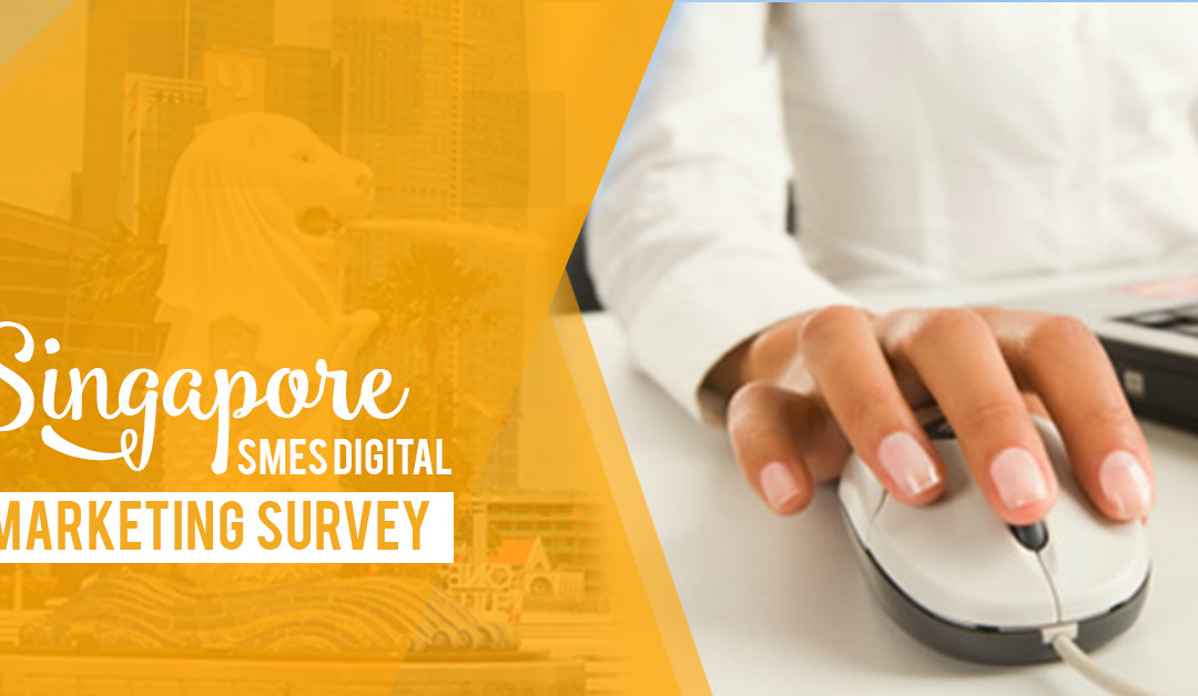 Singapore SMEs Digital Marketing Survey